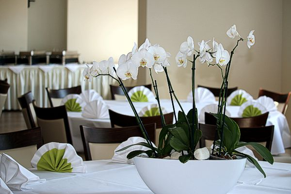 Individuelle Tischdekoration in grün weiss